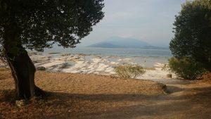 Wild Campen Gardasee