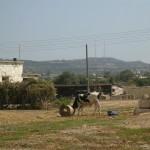 Bauernhof in Karpaz